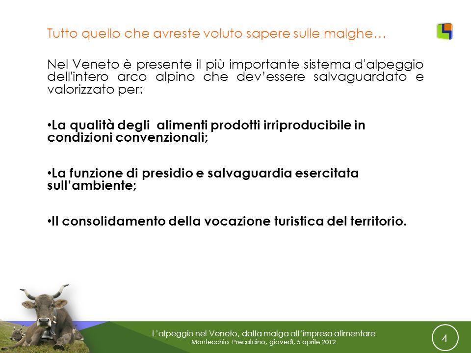 4 Lalpeggio nel Veneto, dalla malga allimpresa alimentare Montecchio Precalcino, giovedì, 5 aprile 2012 Tutto quello che avreste voluto sapere sulle m