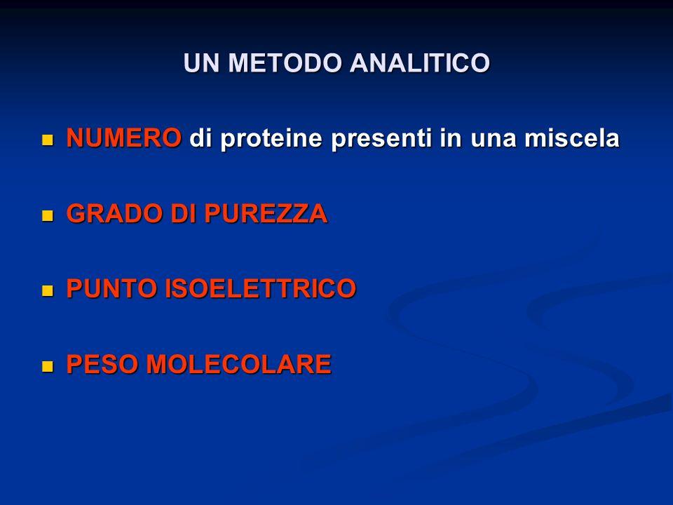 UN METODO ANALITICO NUMERO di proteine presenti in una miscela NUMERO di proteine presenti in una miscela GRADO DI PUREZZA GRADO DI PUREZZA PUNTO ISOE