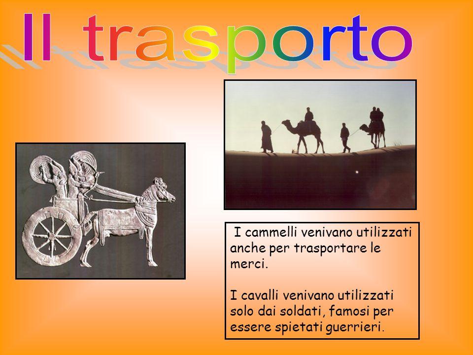I cammelli venivano utilizzati anche per trasportare le merci.