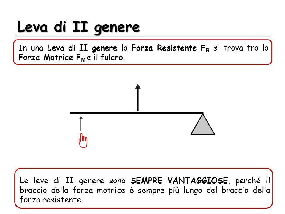 Leva di II genere In una Leva di II genere la Forza Resistente F R si trova tra la Forza Motrice F M e il fulcro. Le leve di II genere sono SEMPRE VAN