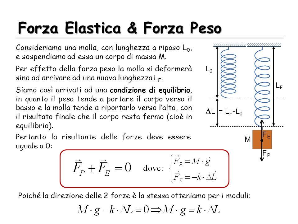 Forza Elastica & Forza Peso Consideriamo una molla, con lunghezza a riposo L 0, e sospendiamo ad essa un corpo di massa M. L0L0 LFLF L = L F - L 0 FEF