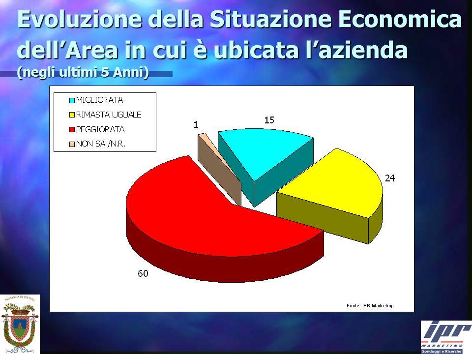 Evoluzione della Situazione Economica dellArea in cui è ubicata lazienda (negli ultimi 5 Anni)