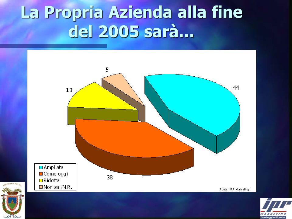 La Propria Azienda alla fine del 2005 sarà...