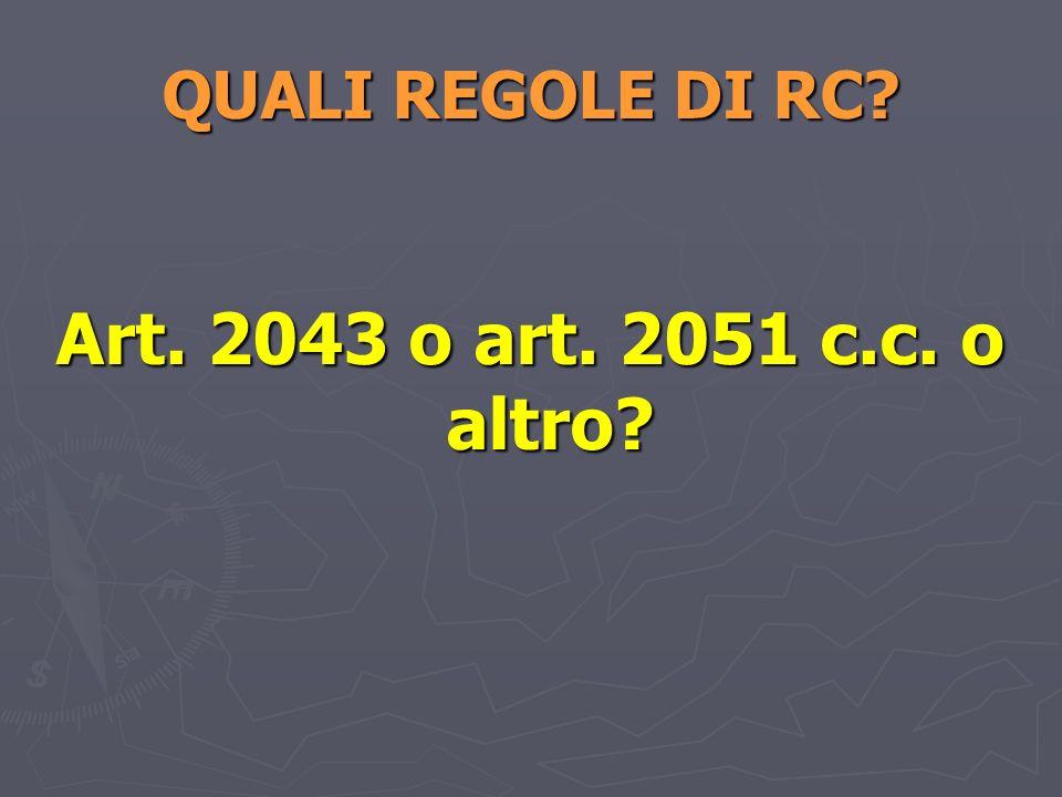 QUALI REGOLE DI RC? Art. 2043 o art. 2051 c.c. o altro?