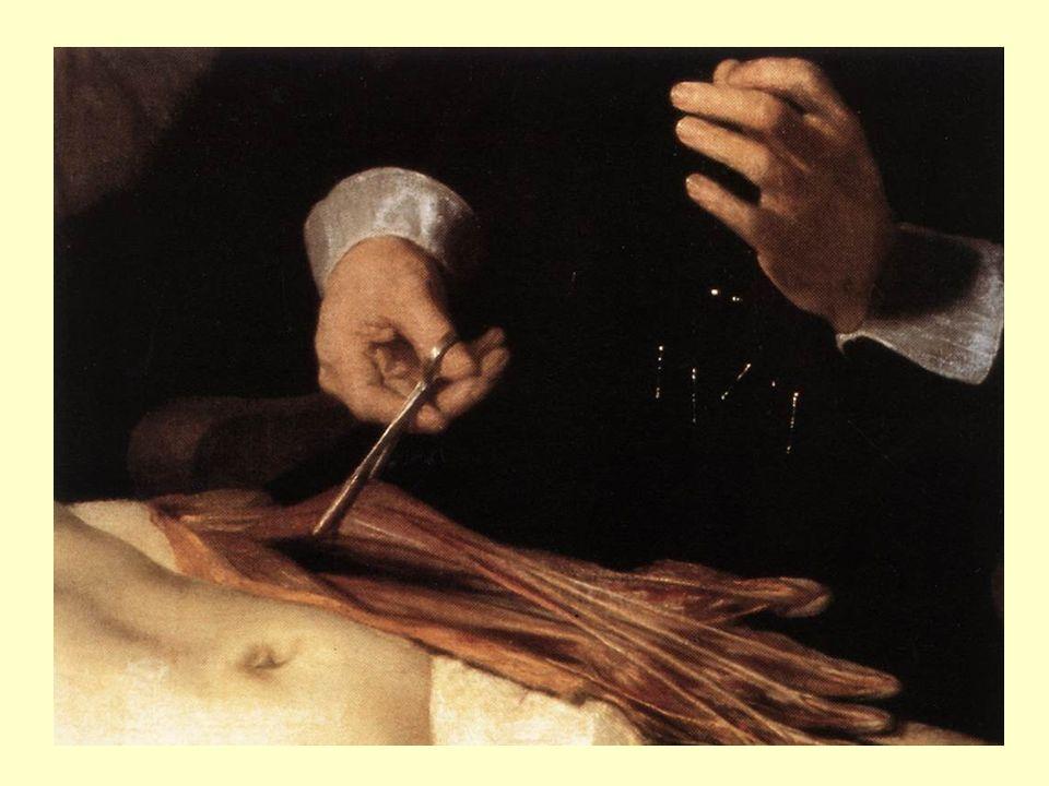 Ritratto di Tito che studia, 1655, olio su tela, 77 x 63, Rotterdam, Museum Boymans-van Beuningen Ritratto di Tito che legge, 1656-1657, olio su tela, 70.5 x 64, Vienna, Kunsthistorisches Museum