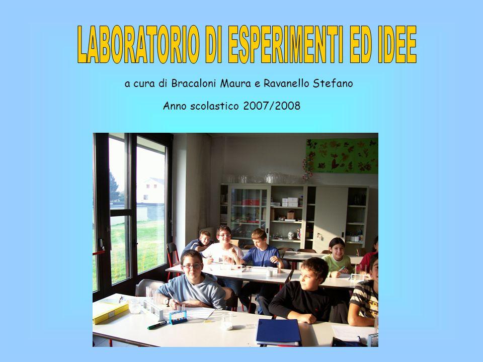 a cura di Bracaloni Maura e Ravanello Stefano Anno scolastico 2007/2008