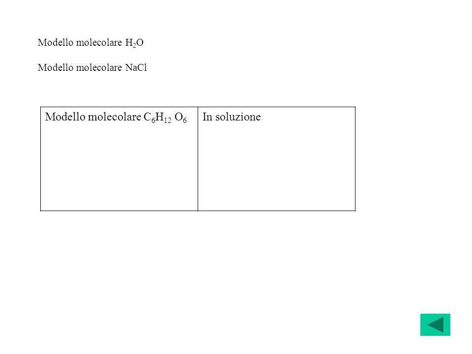 Modello molecolare H 2 O Modello molecolare NaCl Modello molecolare C 6 H 12 O 6 In soluzione