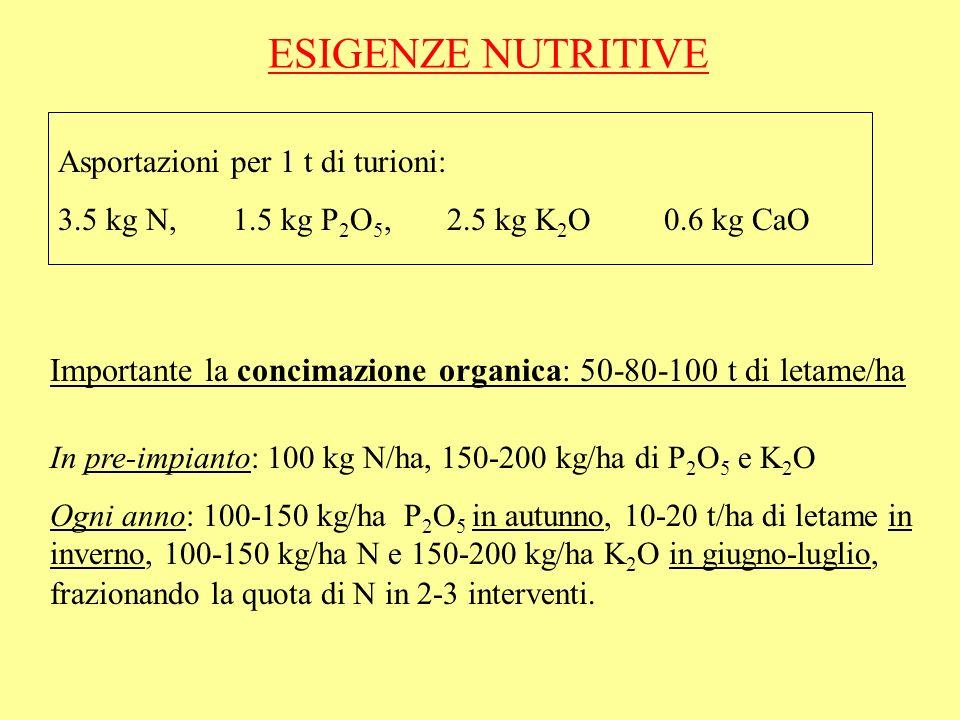 ESIGENZE NUTRITIVE Asportazioni per 1 t di turioni: 3.5 kg N, 1.5 kg P 2 O 5, 2.5 kg K 2 O 0.6 kg CaO Importante la concimazione organica: 50-80-100 t