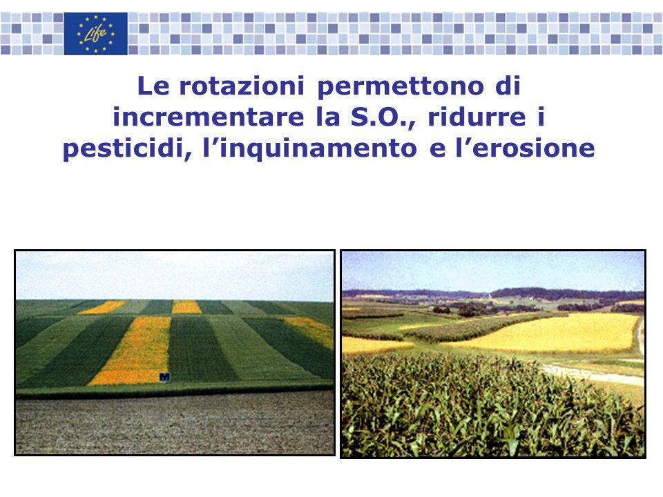 Le rotazioni permettono di incrementare la S.O., ridurre i pesticidi, linquinamento e lerosione