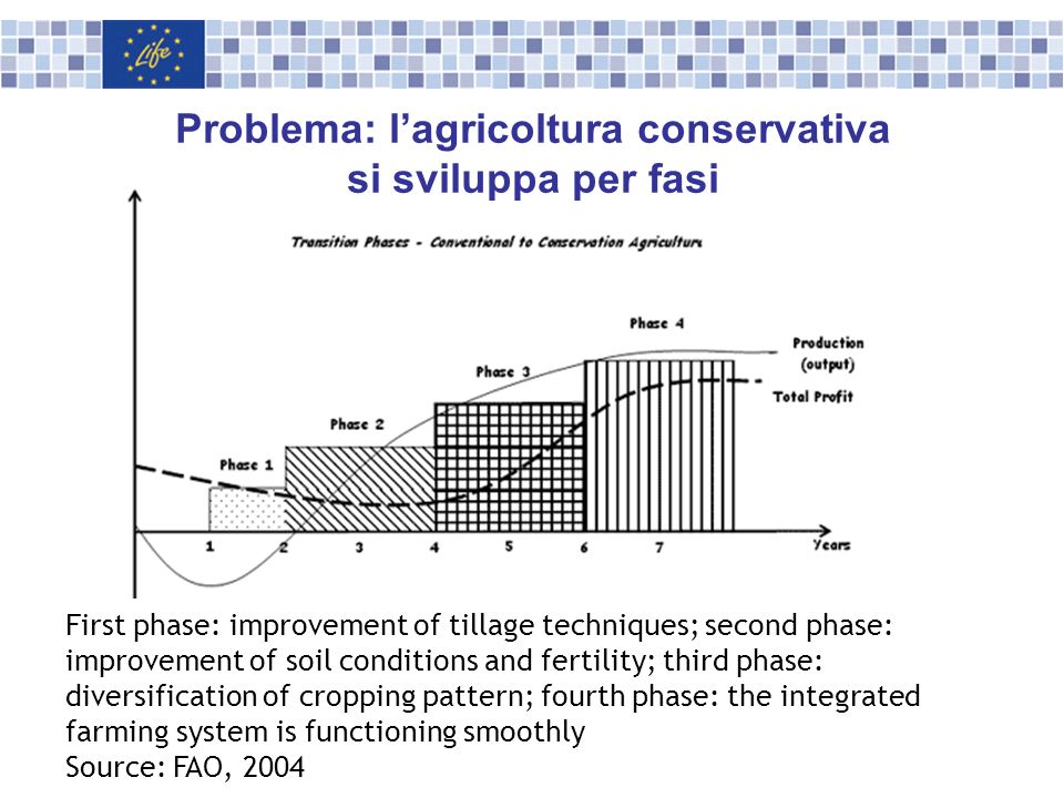 First phase: improvement of tillage techniques; second phase: improvement of soil conditions and fertility; third phase: diversification of cropping p