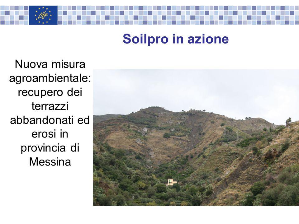 Nuova misura agroambientale: recupero dei terrazzi abbandonati ed erosi in provincia di Messina Soilpro in azione