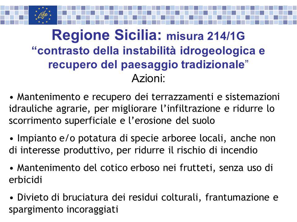 Regione Sicilia: misura 214/1G contrasto della instabilità idrogeologica e recupero del paesaggio tradizionale Azioni: Mantenimento e recupero dei ter