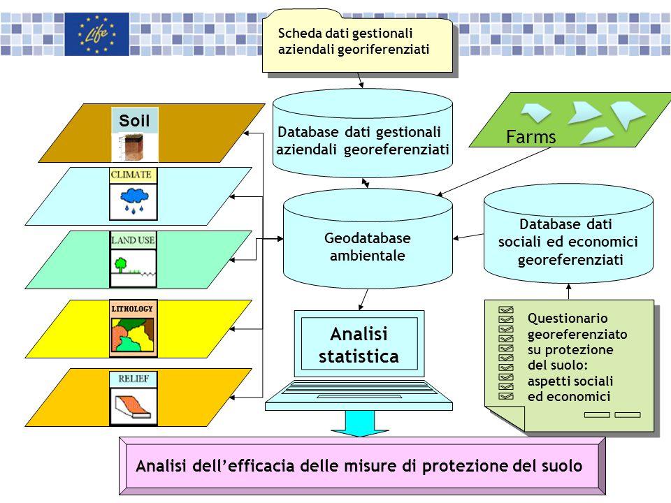 Database dati sociali ed economici georeferenziati Scheda dati gestionali aziendali georiferenziati Geodatabase ambientale Questionario georeferenziat