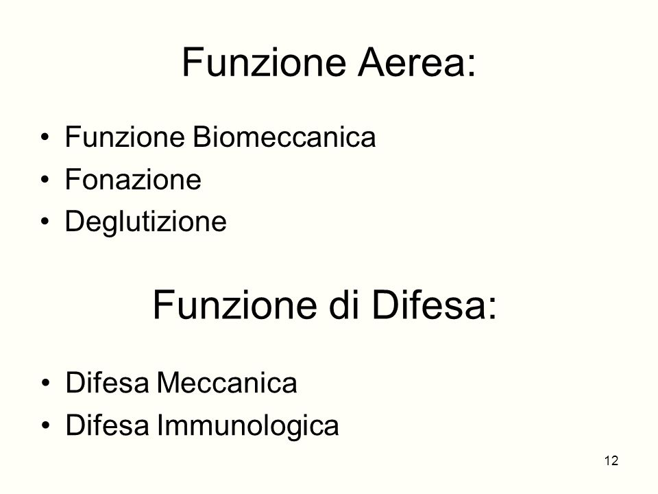 Funzione Aerea: Funzione Biomeccanica Fonazione Deglutizione Funzione di Difesa: Difesa Meccanica Difesa Immunologica 12