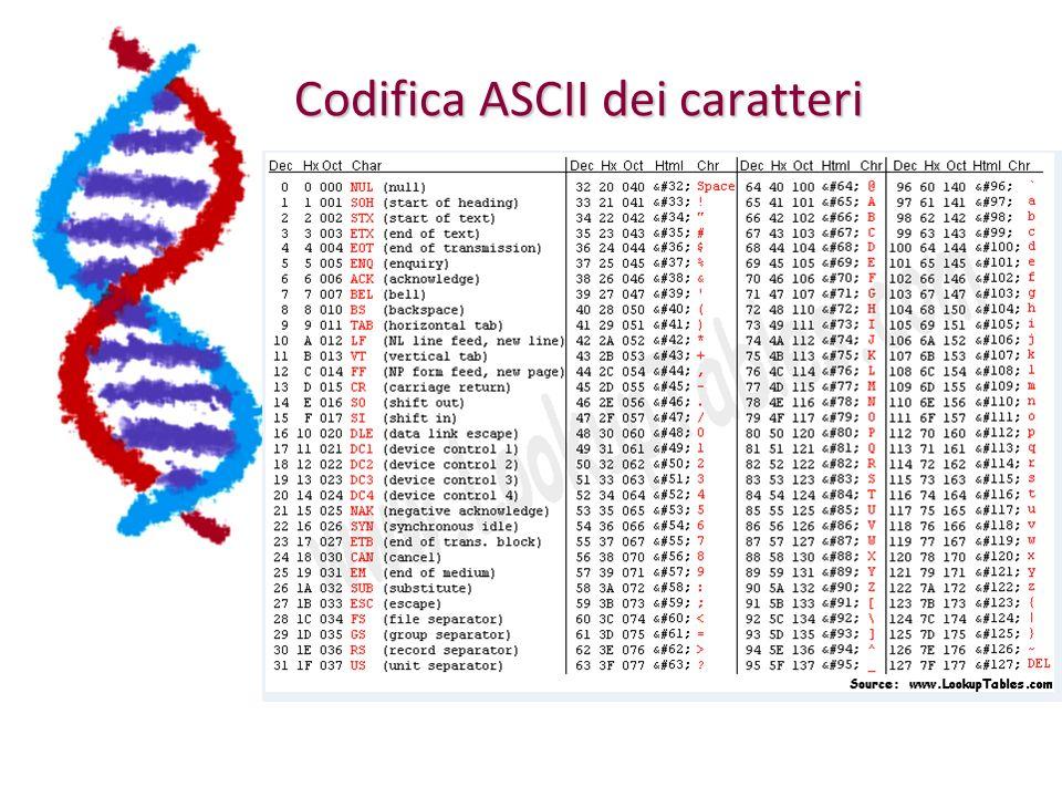 Codifica ASCII dei caratteri