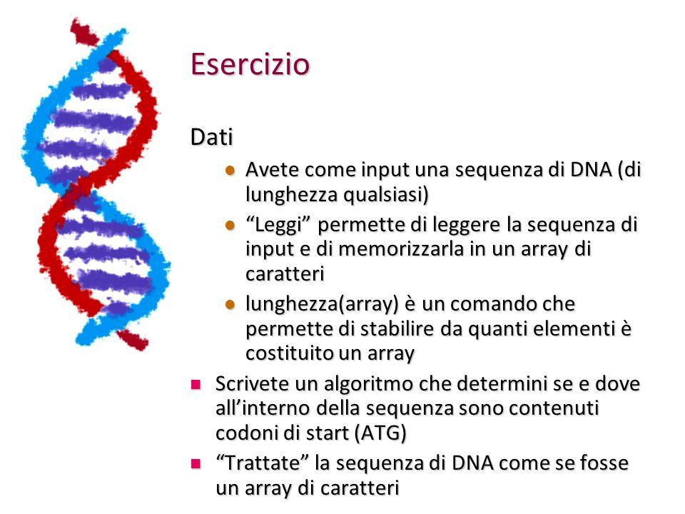 Esercizio Dati Avete come input una sequenza di DNA (di lunghezza qualsiasi) Avete come input una sequenza di DNA (di lunghezza qualsiasi) Leggi perme