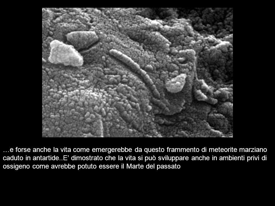 …e forse anche la vita come emergerebbe da questo frammento di meteorite marziano caduto in antartide..E dimostrato che la vita si può sviluppare anch