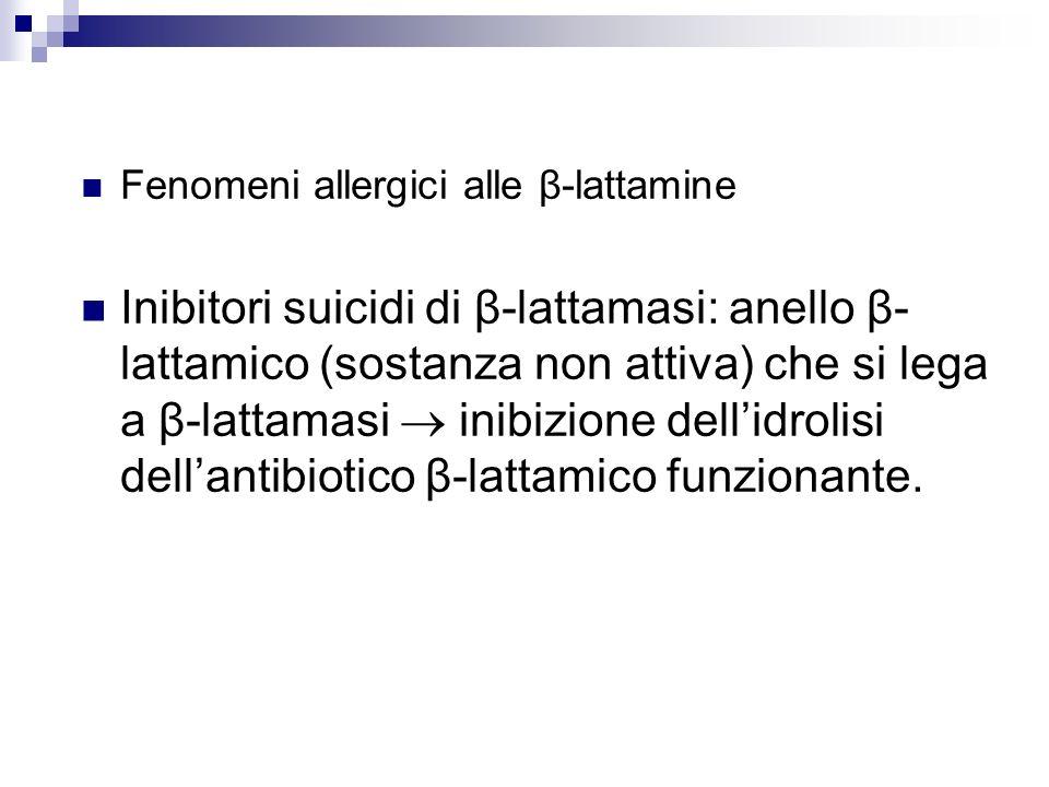 Fenomeni allergici alle β-lattamine Inibitori suicidi di β-lattamasi: anello β- lattamico (sostanza non attiva) che si lega a β-lattamasi inibizione d