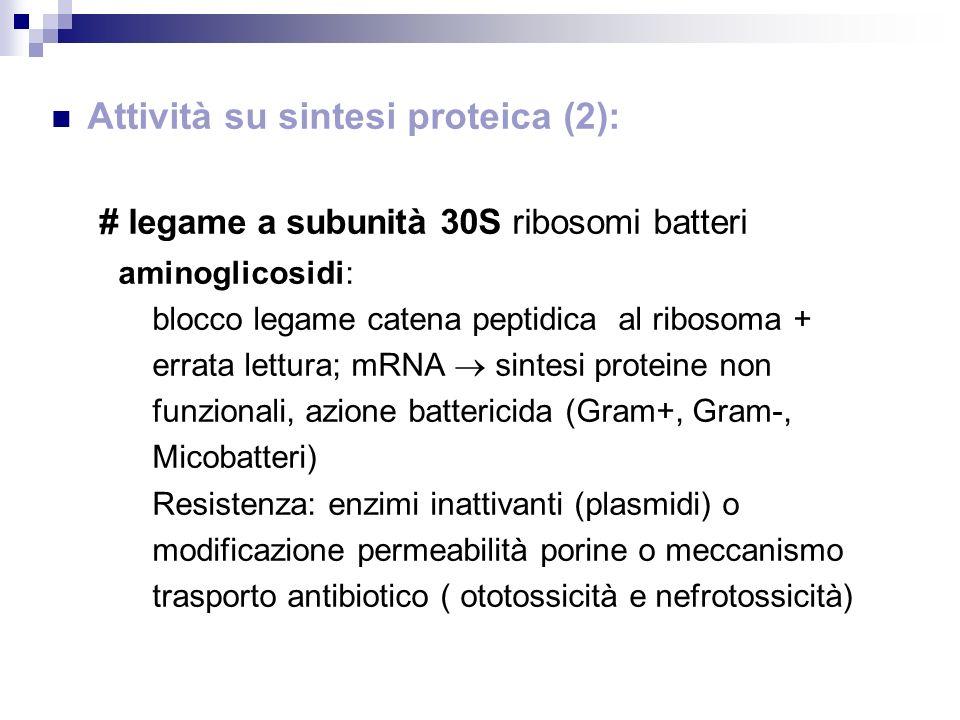 Attività su sintesi proteica (2): # legame a subunità 30S ribosomi batteri aminoglicosidi: blocco legame catena peptidica al ribosoma + errata lettura
