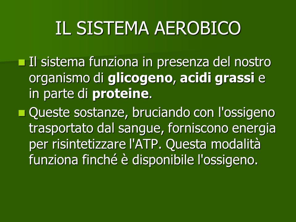 IL SISTEMA AEROBICO Il sistema funziona in presenza del nostro organismo di glicogeno, acidi grassi e in parte di proteine. Il sistema funziona in pre
