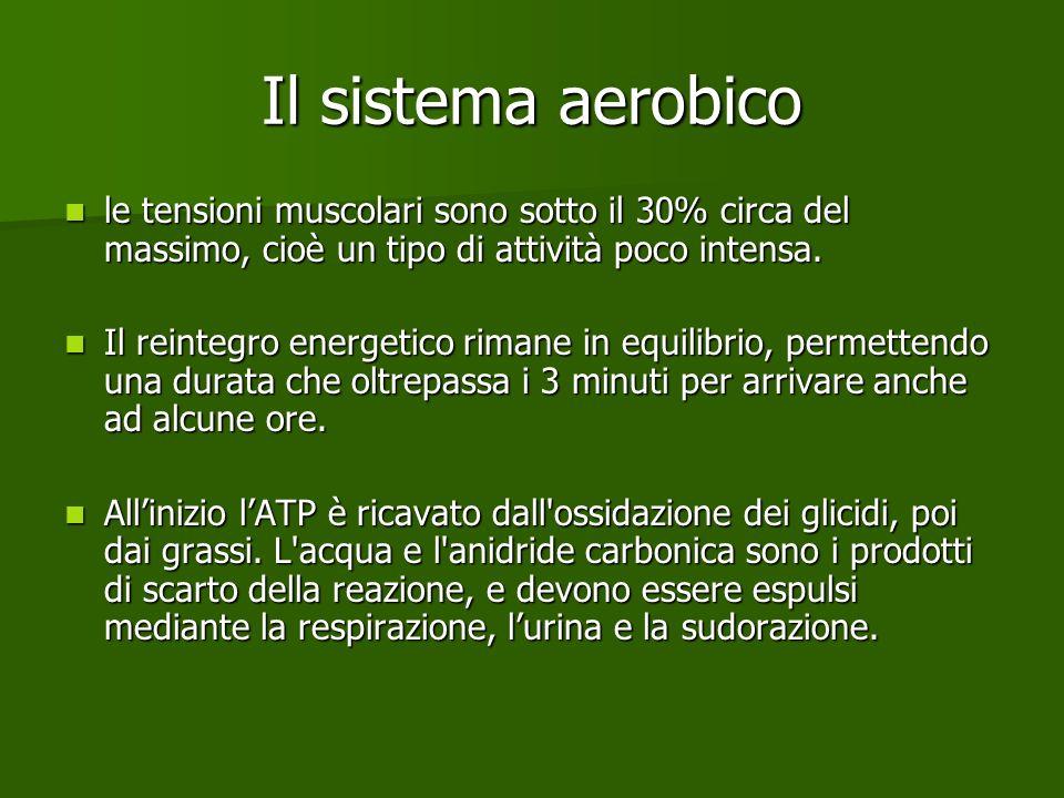Il sistema aerobico le tensioni muscolari sono sotto il 30% circa del massimo, cioè un tipo di attività poco intensa. le tensioni muscolari sono sotto