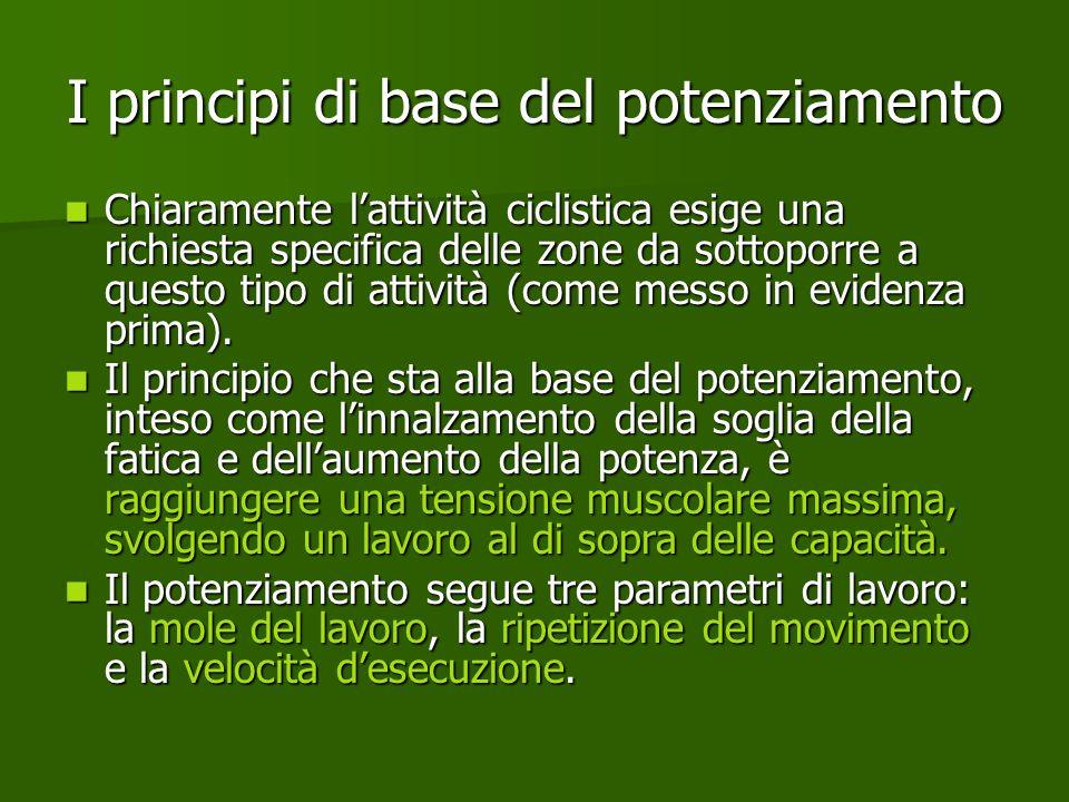 I principi di base del potenziamento Chiaramente lattività ciclistica esige una richiesta specifica delle zone da sottoporre a questo tipo di attività