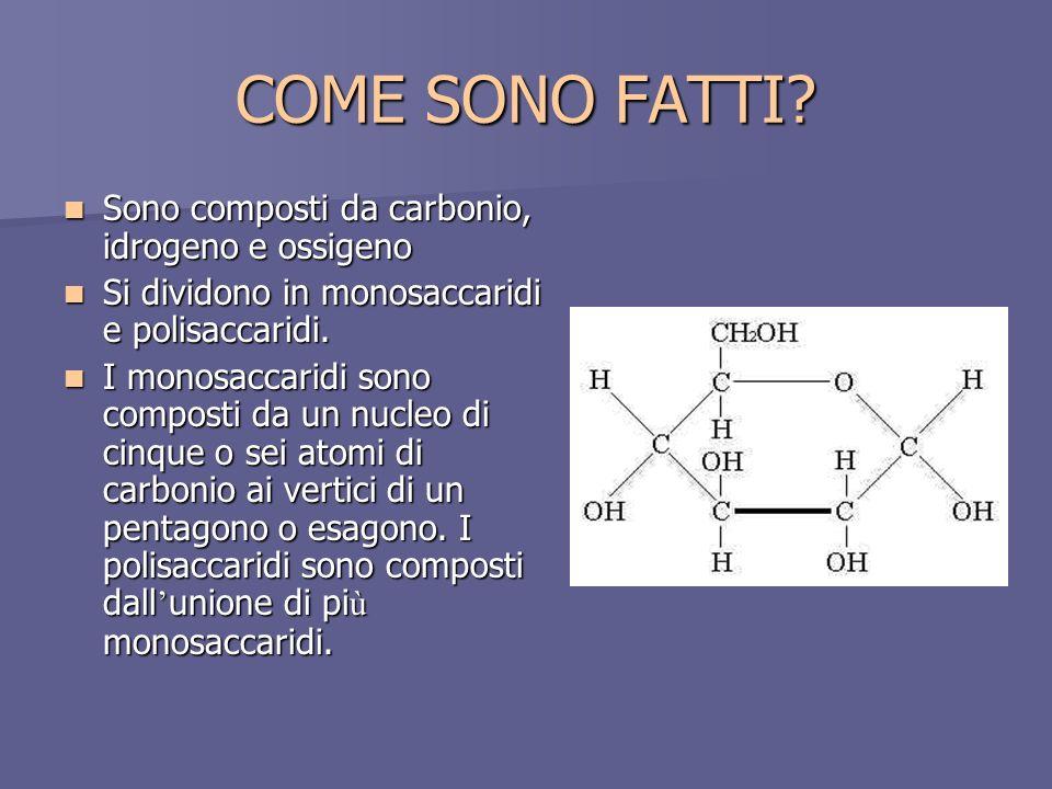 COME SONO FATTI? Sono composti da carbonio, idrogeno e ossigeno Sono composti da carbonio, idrogeno e ossigeno Si dividono in monosaccaridi e polisacc