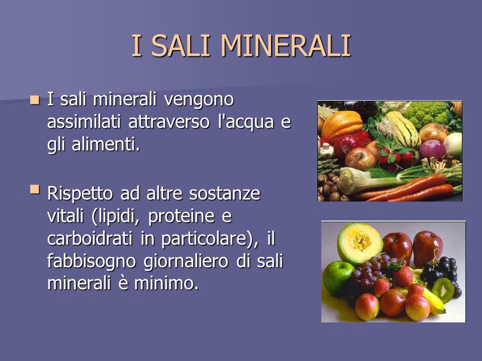 I SALI MINERALI I sali minerali vengono assimilati attraverso l'acqua e gli alimenti. I sali minerali vengono assimilati attraverso l'acqua e gli alim