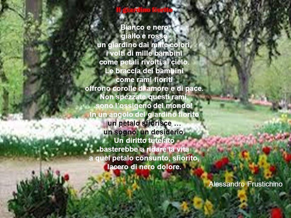 Il giardino fiorito Bianco e nero giallo e rosso un giardino dai mille colori, i volti di mille bambini come petali rivolti al cielo. Le braccia dei b