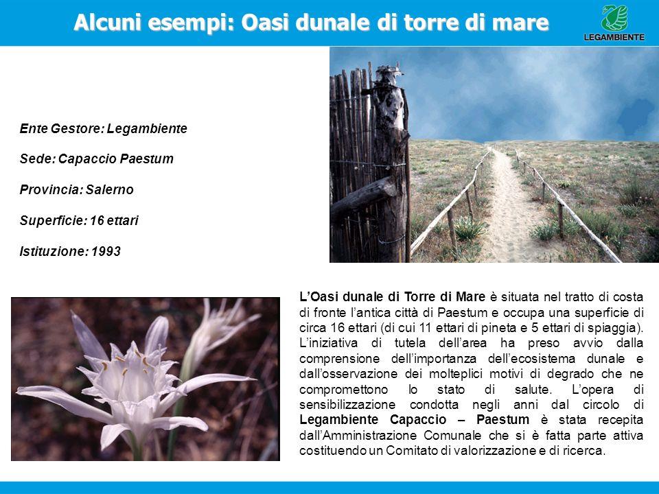 Alcuni esempi: Oasi dunale di torre di mare Ente Gestore: Legambiente Sede: Capaccio Paestum Provincia: Salerno Superficie: 16 ettari Istituzione: 199