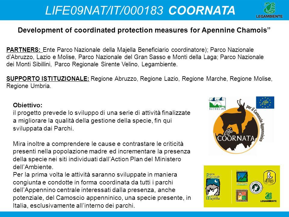Development of coordinated protection measures for Apennine Chamois PARTNERS: Ente Parco Nazionale della Majella Beneficiario coordinatore); Parco Naz