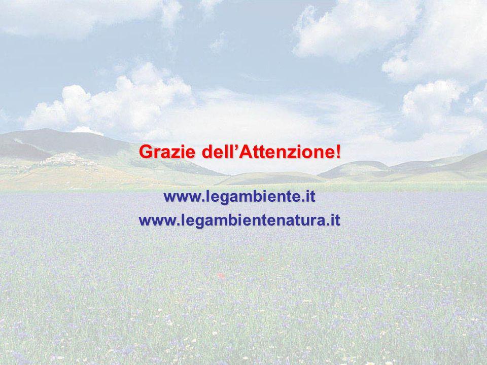 Grazie dellAttenzione! www.legambiente.itwww.legambientenatura.it