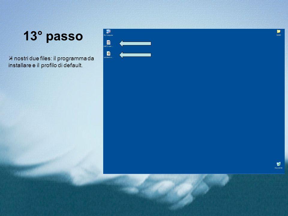 13° passo I nostri due files: il programma da installare e il profilo di default.