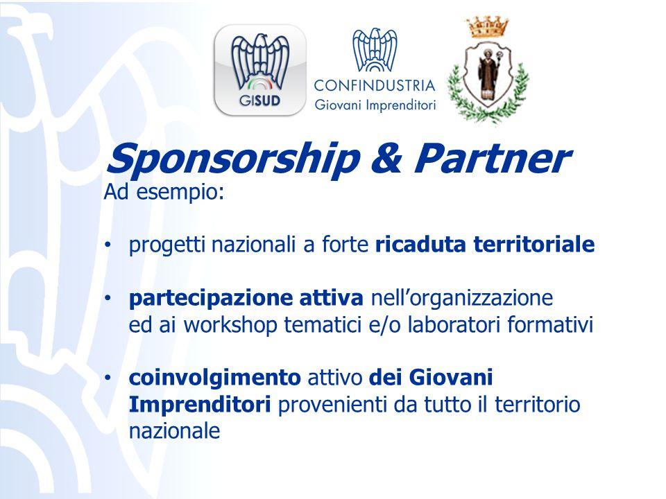 Ad esempio: progetti nazionali a forte ricaduta territoriale partecipazione attiva nellorganizzazione ed ai workshop tematici e/o laboratori formativi
