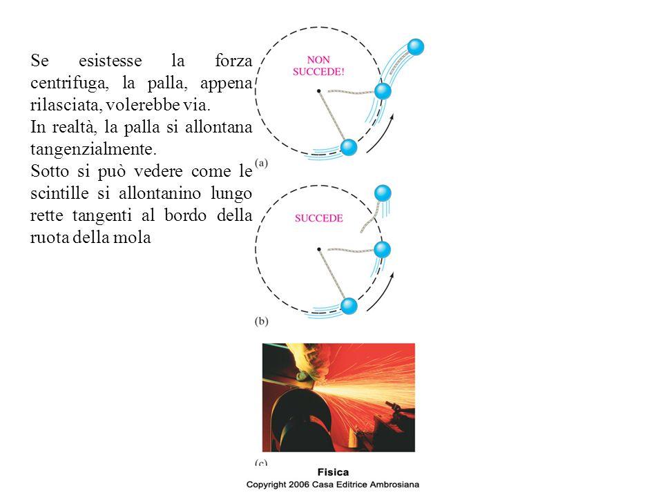 Se esistesse la forza centrifuga, la palla, appena rilasciata, volerebbe via. In realtà, la palla si allontana tangenzialmente. Sotto si può vedere co