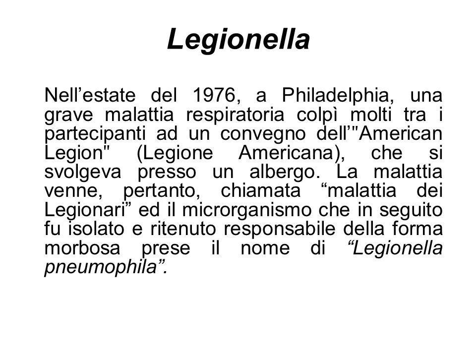 Legionella Nellestate del 1976, a Philadelphia, una grave malattia respiratoria colpì molti tra i partecipanti ad un convegno dell ʺ American Legion ʺ
