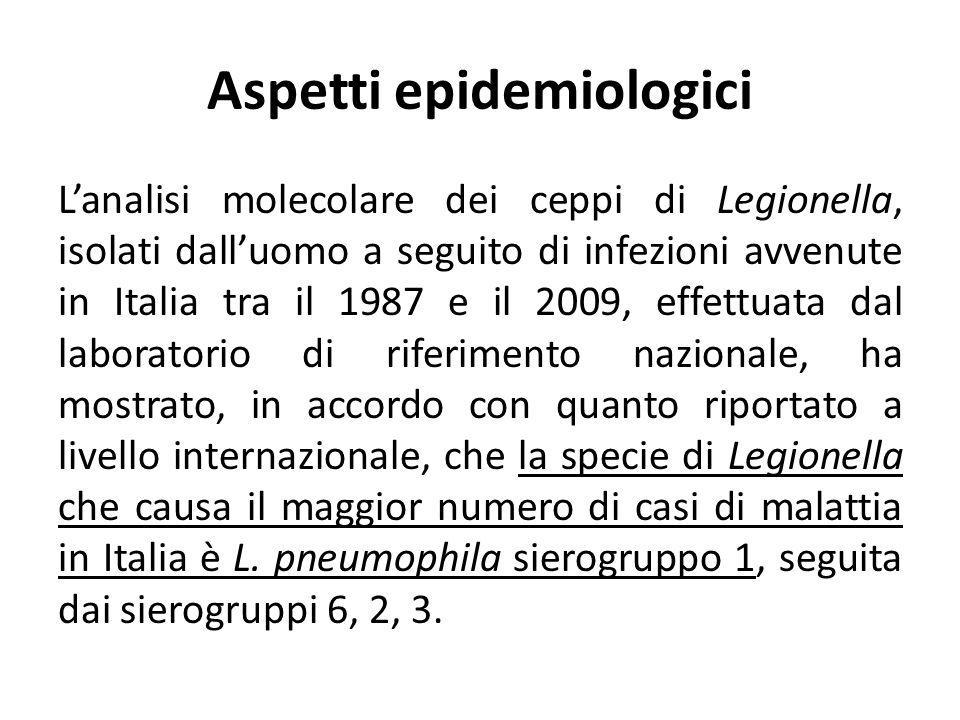 Aspetti epidemiologici Lanalisi molecolare dei ceppi di Legionella, isolati dalluomo a seguito di infezioni avvenute in Italia tra il 1987 e il 2009,
