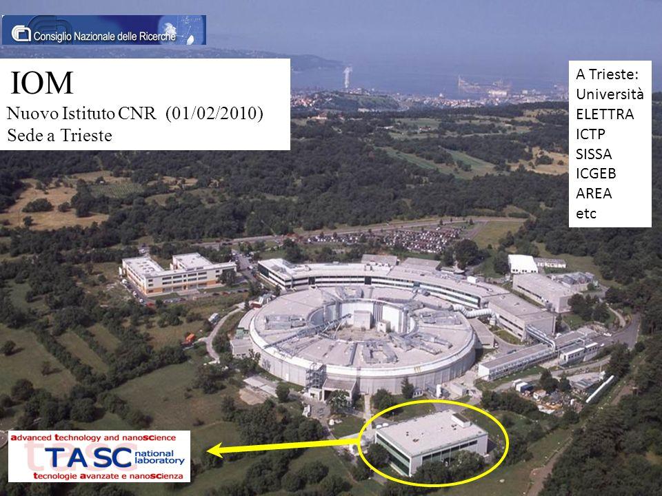 IOM Nuovo Istituto CNR (01/02/2010) Sede a Trieste A Trieste: Università ELETTRA ICTP SISSA ICGEB AREA etc