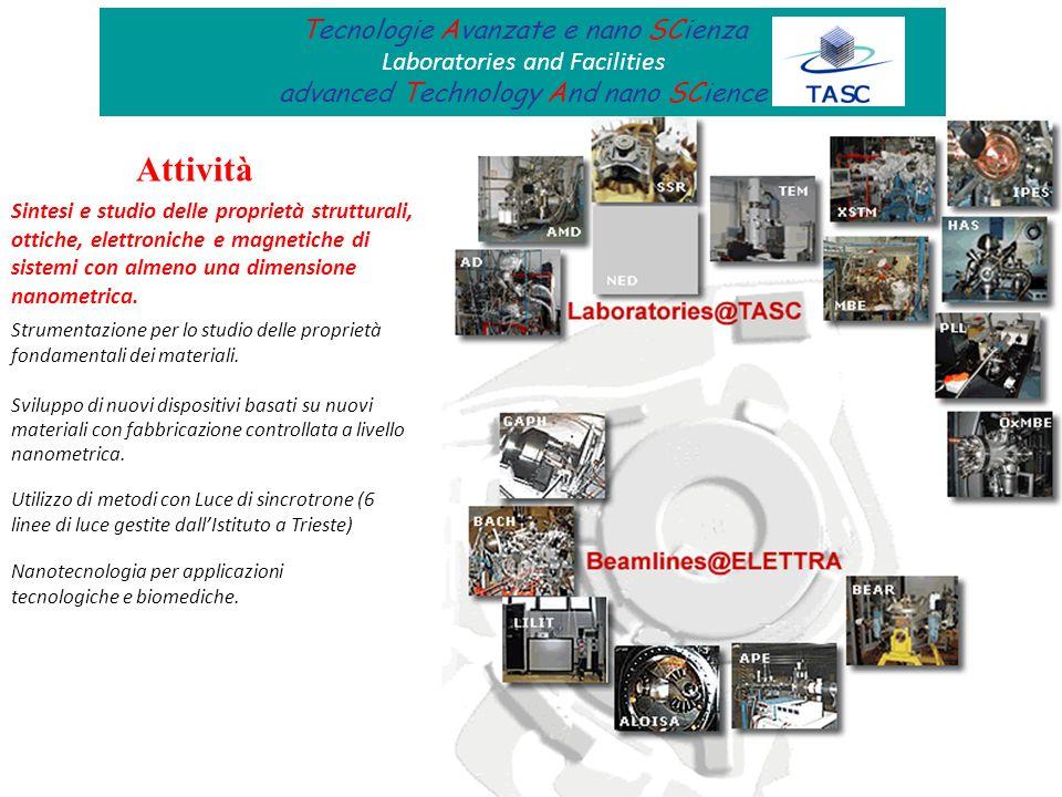 Attività Tecnologie Avanzate e nano SCienza Laboratories and Facilities advanced Technology And nano SCience Sintesi e studio delle proprietà struttur