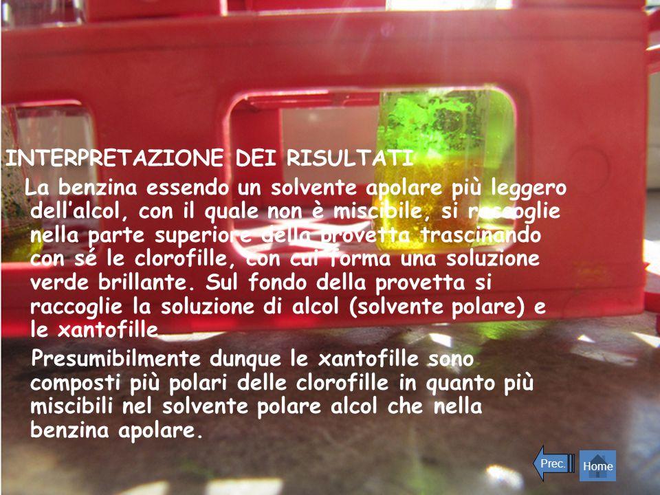 INTERPRETAZIONE DEI RISULTATI La benzina essendo un solvente apolare più leggero dellalcol, con il quale non è miscibile, si raccoglie nella parte sup