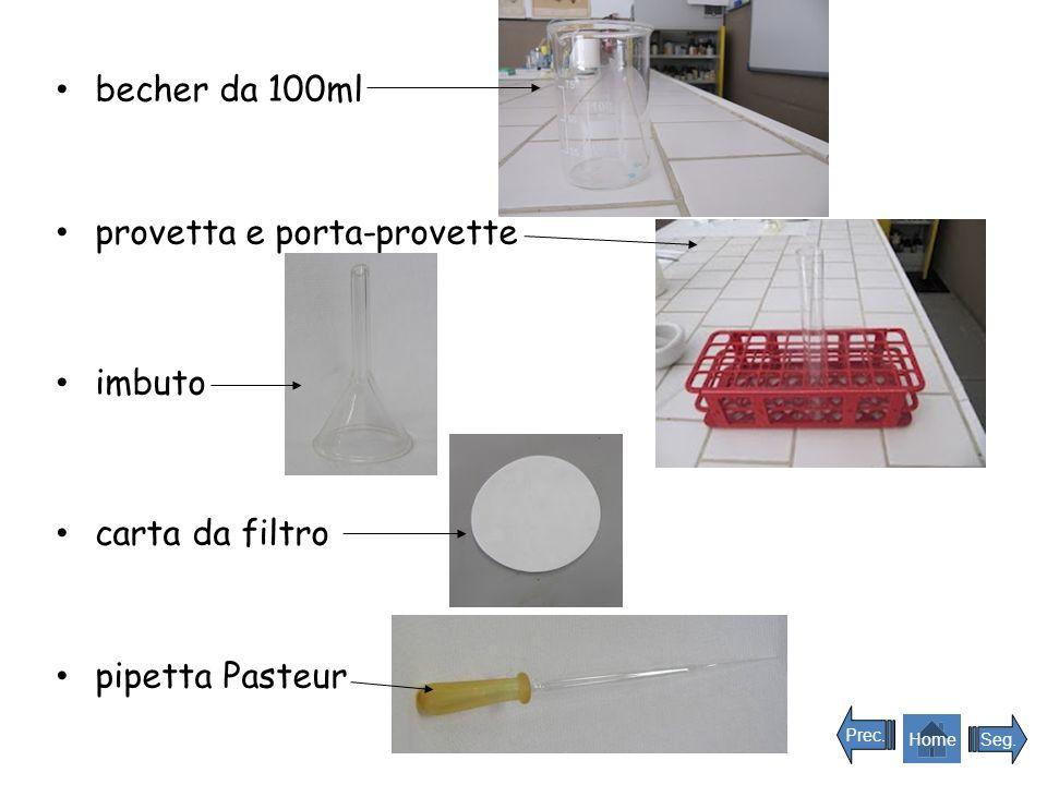 becher da 100ml provetta e porta-provette imbuto carta da filtro pipetta Pasteur Seg. Prec. Home