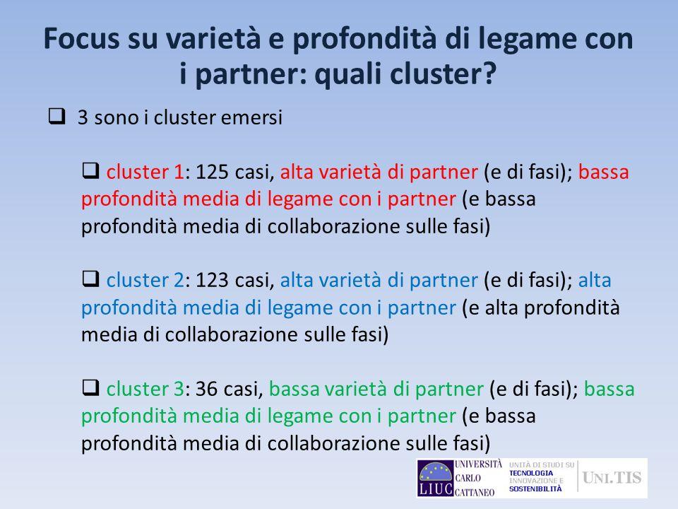3 sono i cluster emersi cluster 1: 125 casi, alta varietà di partner (e di fasi); bassa profondità media di legame con i partner (e bassa profondità m