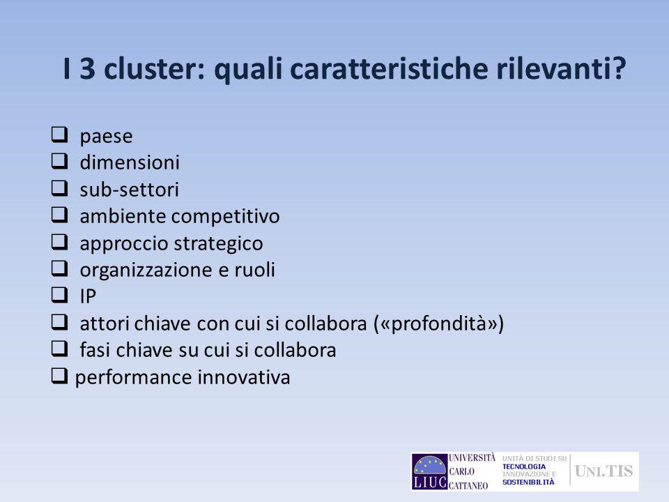 paese dimensioni sub-settori ambiente competitivo approccio strategico organizzazione e ruoli IP attori chiave con cui si collabora («profondità») fas