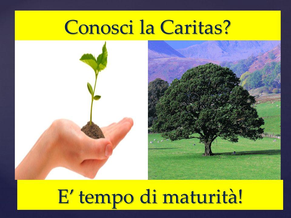 Conosci la Caritas? E tempo di maturità!