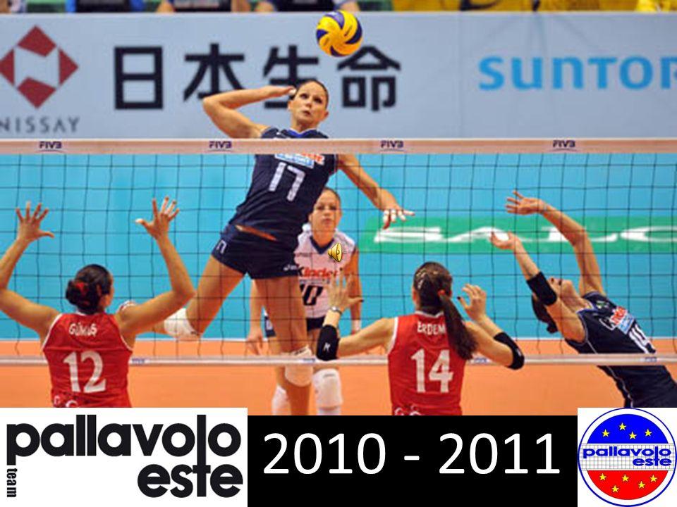 2010 - 2011