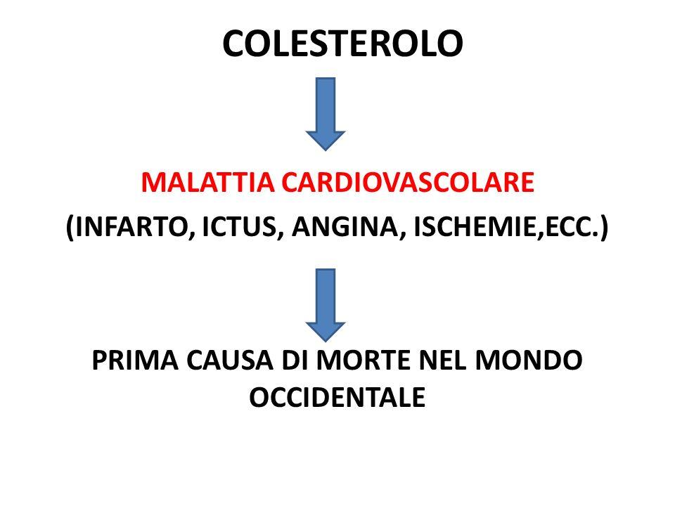 COLESTEROLO MALATTIA CARDIOVASCOLARE (INFARTO, ICTUS, ANGINA, ISCHEMIE,ECC.) PRIMA CAUSA DI MORTE NEL MONDO OCCIDENTALE