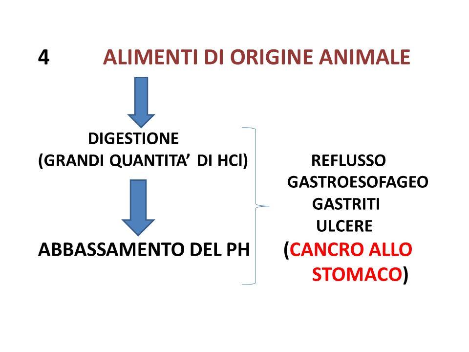 4 ALIMENTI DI ORIGINE ANIMALE DIGESTIONE (GRANDI QUANTITA DI HCl) REFLUSSO GASTROESOFAGEO GASTRITI ULCERE ABBASSAMENTO DEL PH (CANCRO ALLO STOMACO)