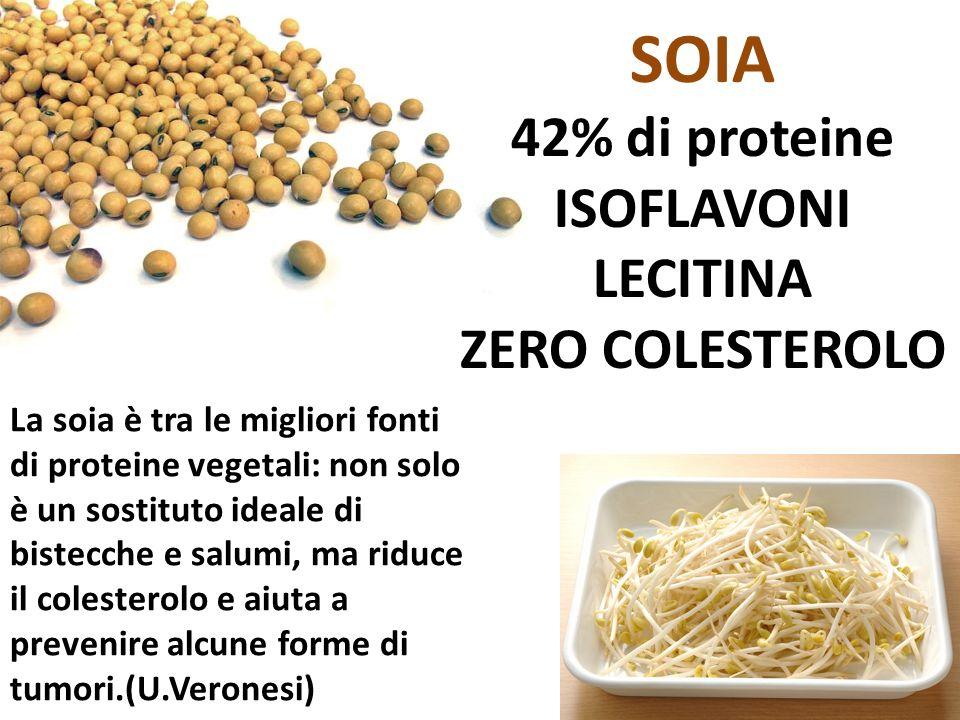 SOIA 42% di proteine ISOFLAVONI LECITINA ZERO COLESTEROLO La soia è tra le migliori fonti di proteine vegetali: non solo è un sostituto ideale di bist
