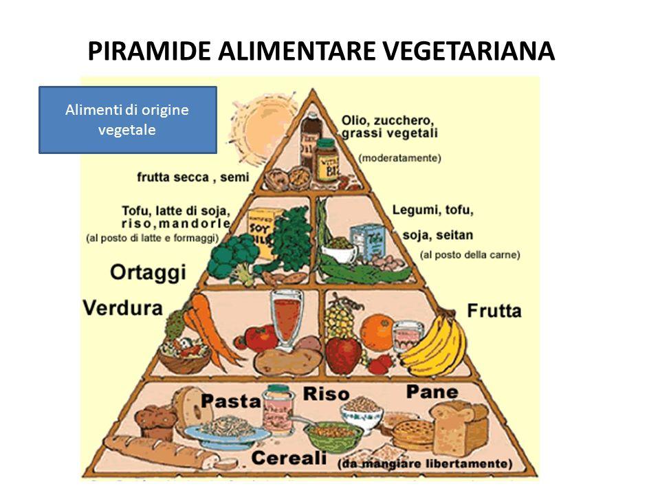 PIRAMIDE ALIMENTARE VEGETARIANA Alimenti di origine vegetale