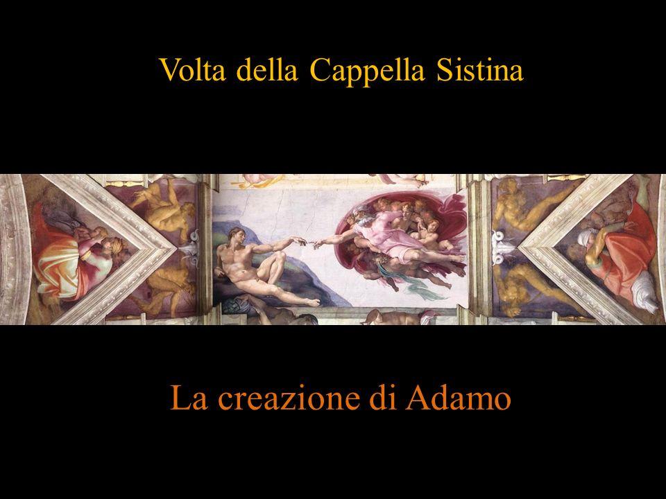Volta della Cappella Sistina La creazione di Adamo